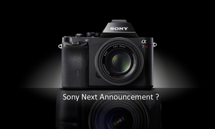 Sony next ann