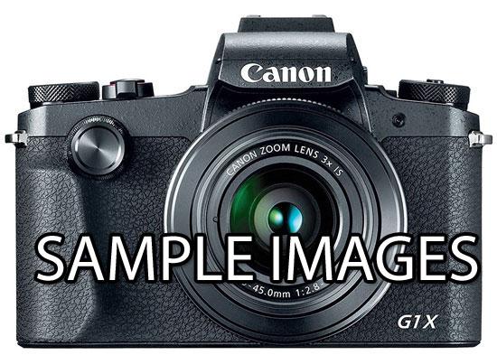 Canon G1X Mark III Sample