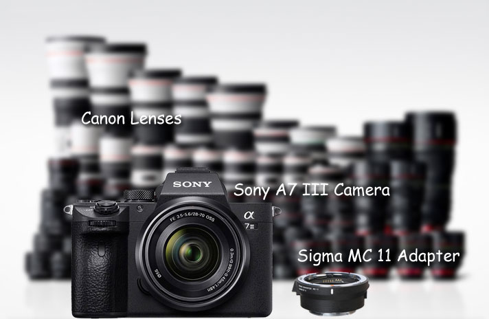 Sony A7 III camera with Canon Lenses