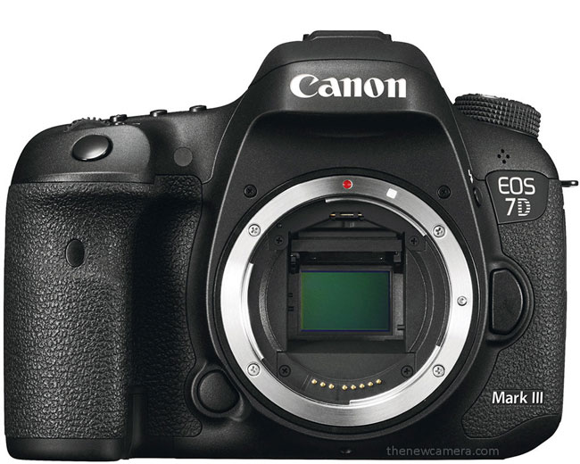 Canon 7D Mark III « NEW CAMERA