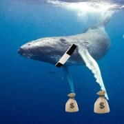 Father Leahy Becomes A Whale, Changes Tuition To Krill