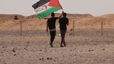 Ritorno Di Fiamma Nel Sahara Occidentale