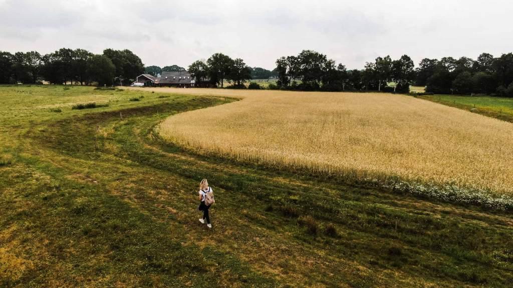 Ontdek het zuidwesten van Drenthe