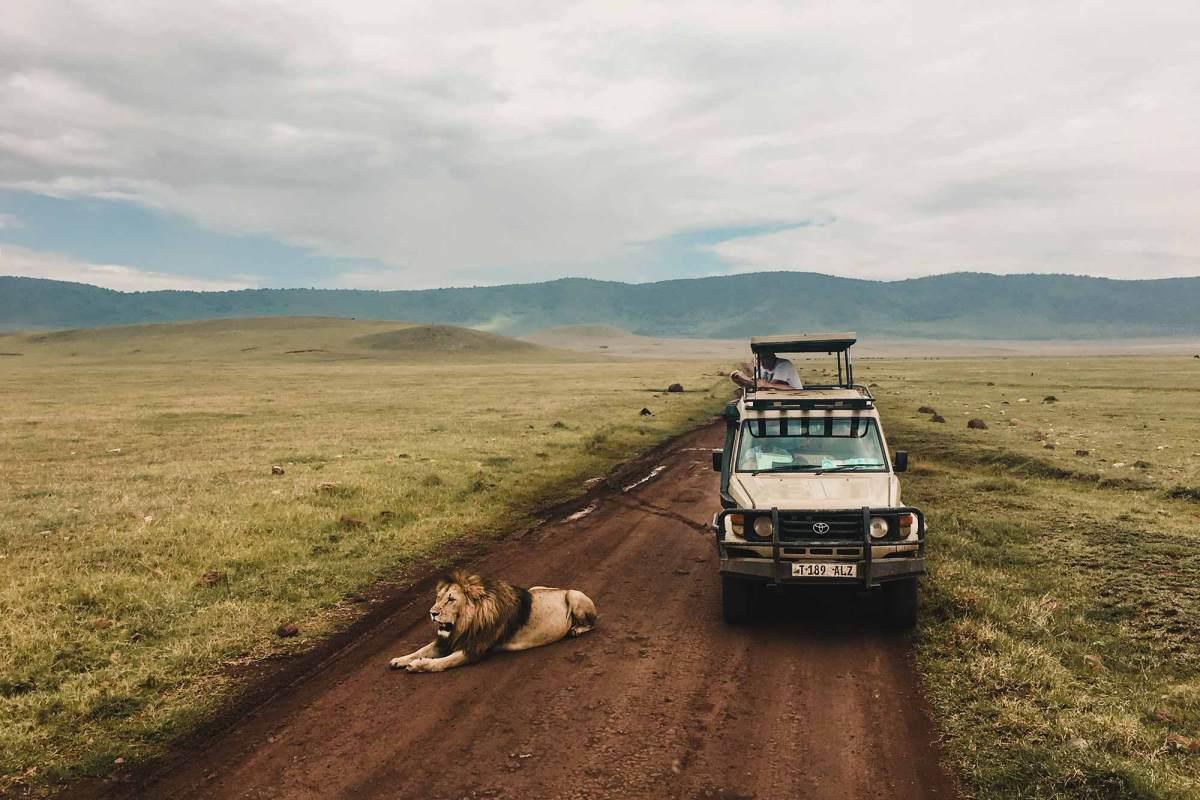 Op safari in Tanzania in Afrika
