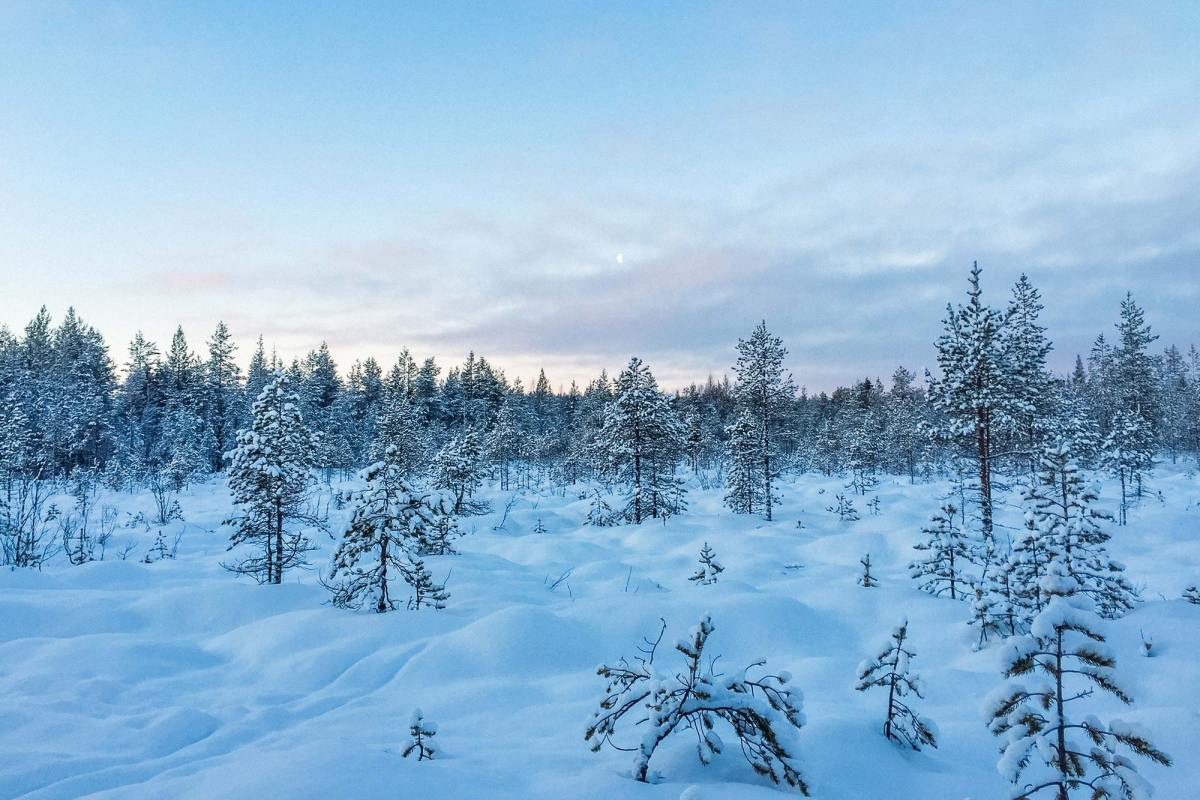 Op zoek naar het Noorderlicht in Lapland