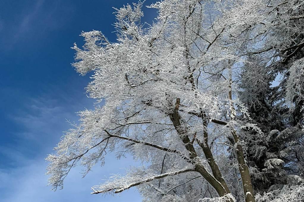Winterwonderland in Winterberg