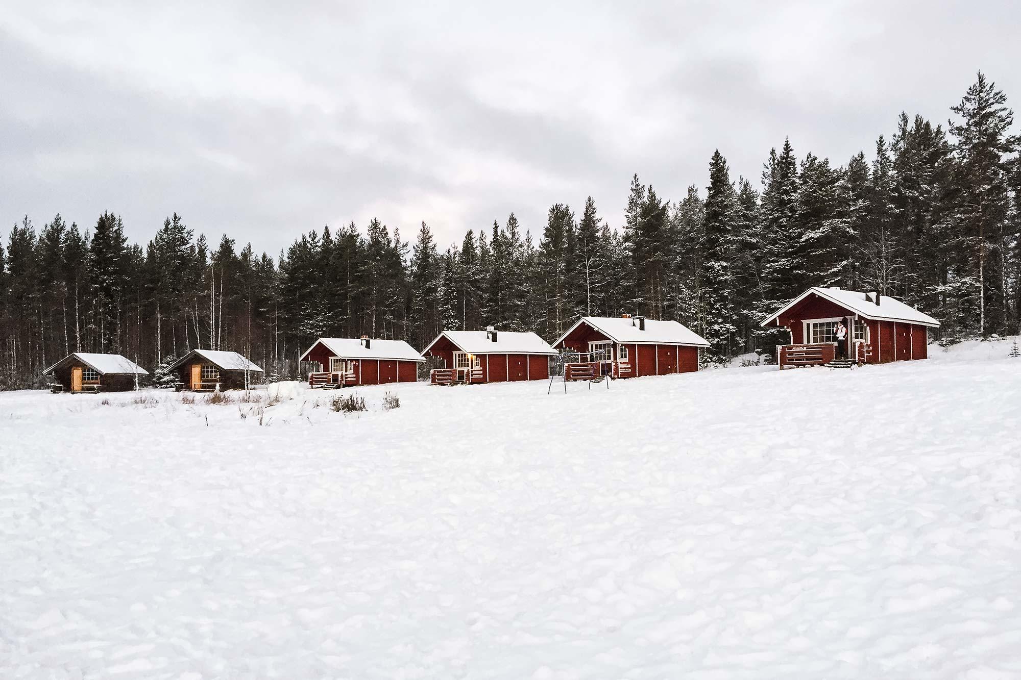 Expeditie Lapland: Huskies, sauna's en het Noorderlicht