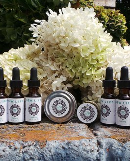 CBD Featured Products