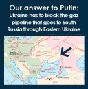 Putin's regime is fragile - asymmetrical answer is to attack the pipelines by virtual terrorists - 11.03.2014