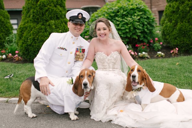 The Most Brilliant Thing to Do With Your Pets During the Wedding