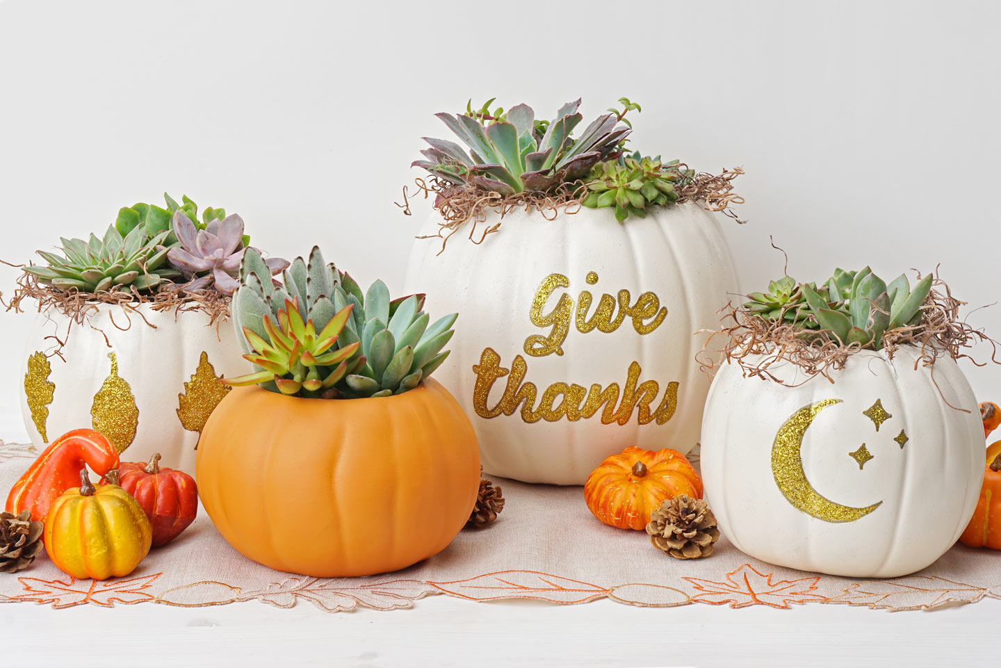DIY Pumpkin Succulents
