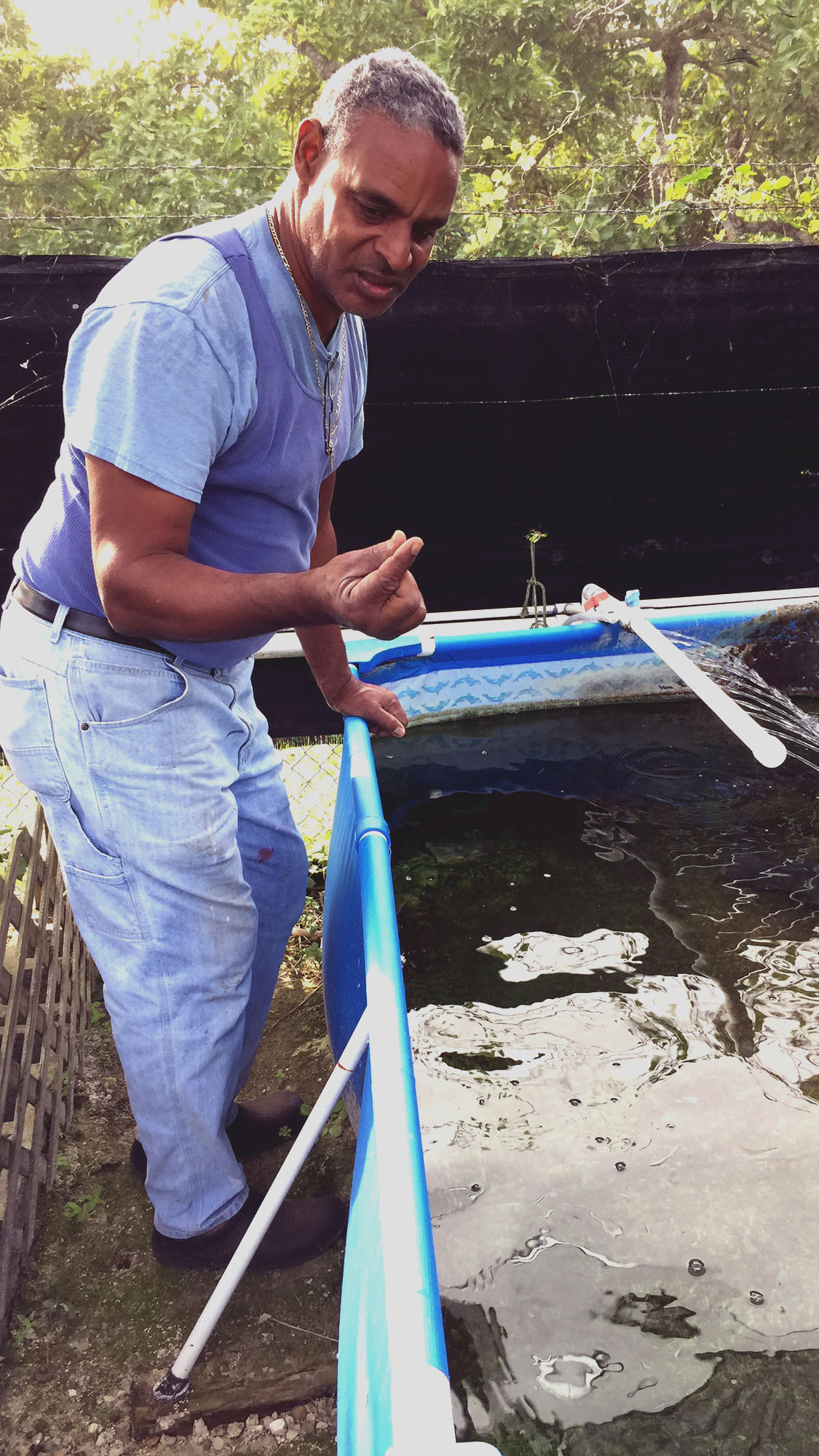 Inside a Miami fish farm