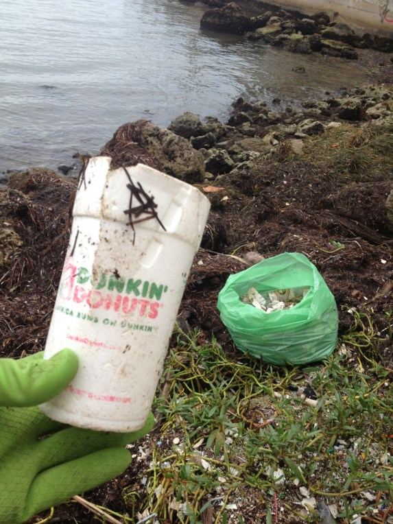 Dunkin' Donuts cup picked out of Biscayne Bay. (Courtesy Dave Doebler)