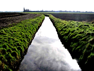 Cambridge Stream - Sarah Jones