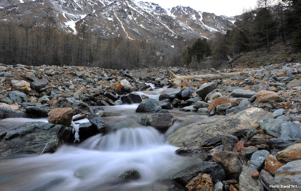 Stream in the Russian Altai (Photo: David Tett)