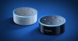 Two Alexa speakers