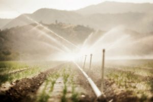 irrigation_5834735312_fd8b7ee04b_1024