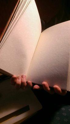 codex 01.jpeg