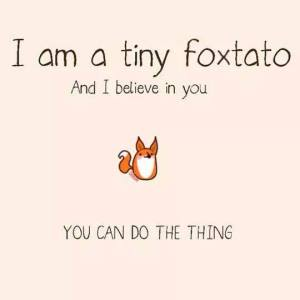 I am a tiny foxtato and I believe that you can set better goals.