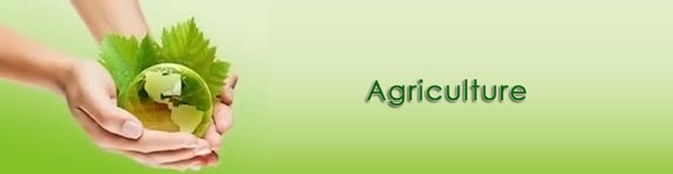 How to Become An Agriculture Officers in Pakistan After Agriculture Degree Programs Career Scope
