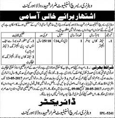 The Deputy Director Mines and Minerals Grade 4 Jobs 2017 Application Form Download For Darja Chaharam Eligibility Criteria Last Date