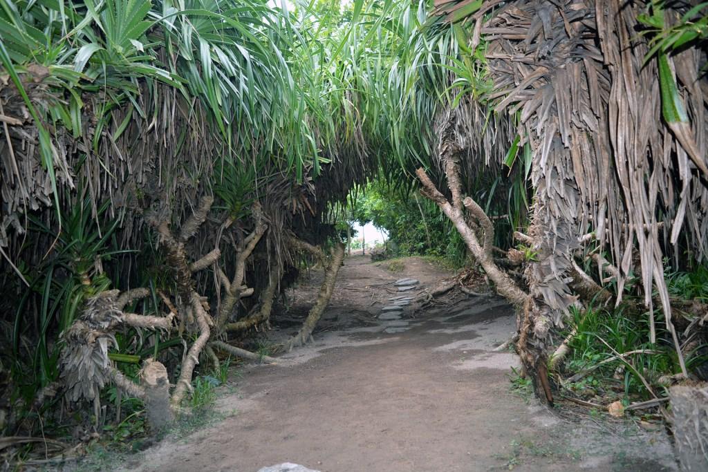 Jungle greenery