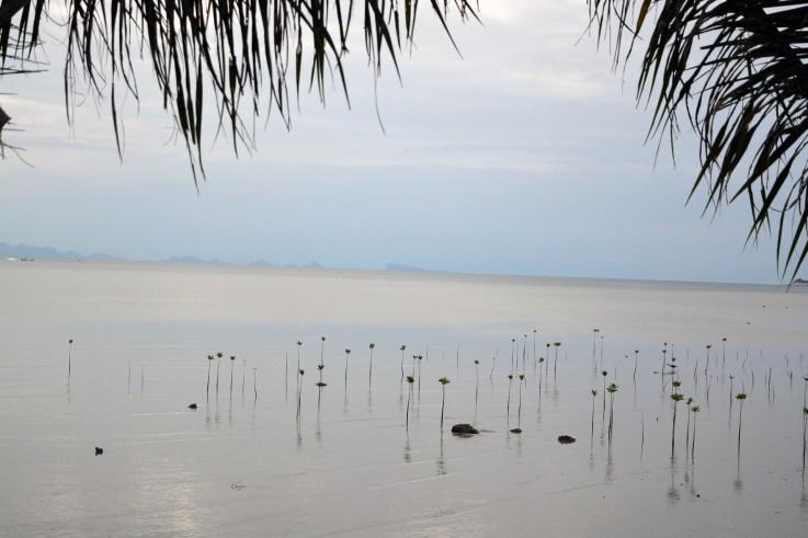 Around the island, Koh Phangan, Thailand