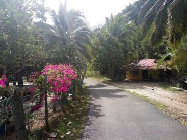 Around the village, Tuba island