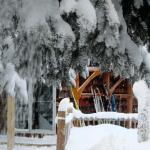 Destination – Stokely Creek Resort