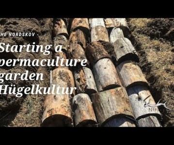 Starting a permaculture garden | Hügelkultur