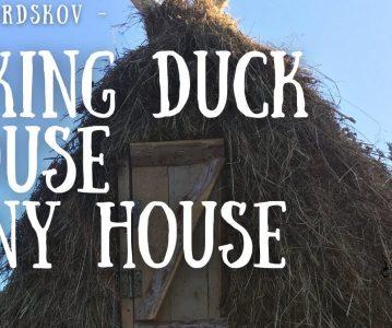 Viking Duck House | Tiny tiny house | Micro house |