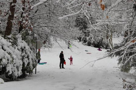 Neon snowsuits and sleds punctuate the whiteness all around.