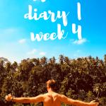 travel diary week 4