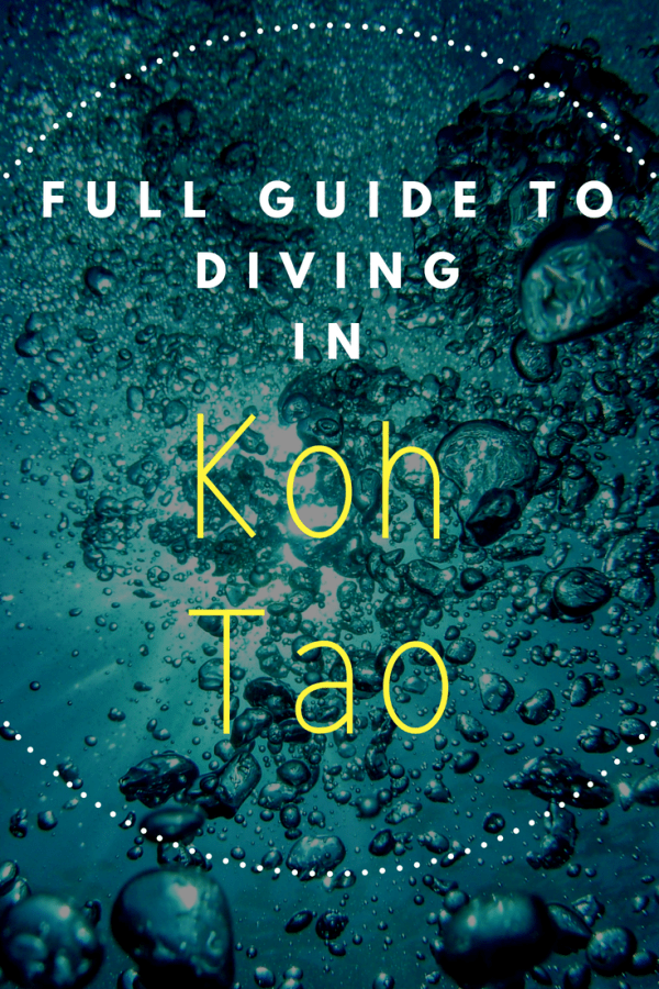 BEST KOH TAO DIVING SCHOOL REVIEW (FULL GUIDE)