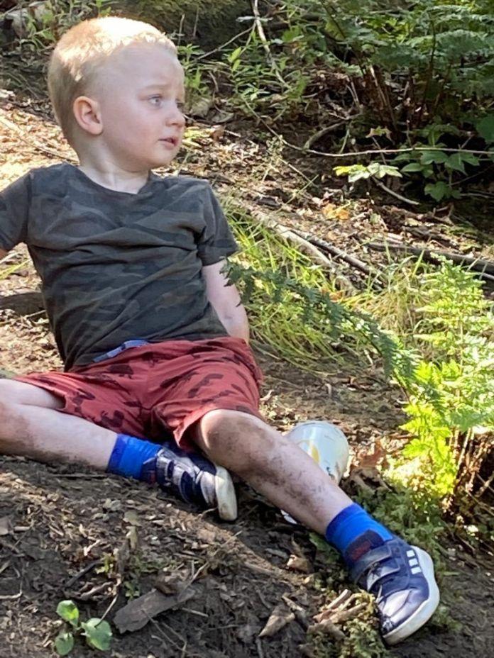 Alfie in Guisborough woods