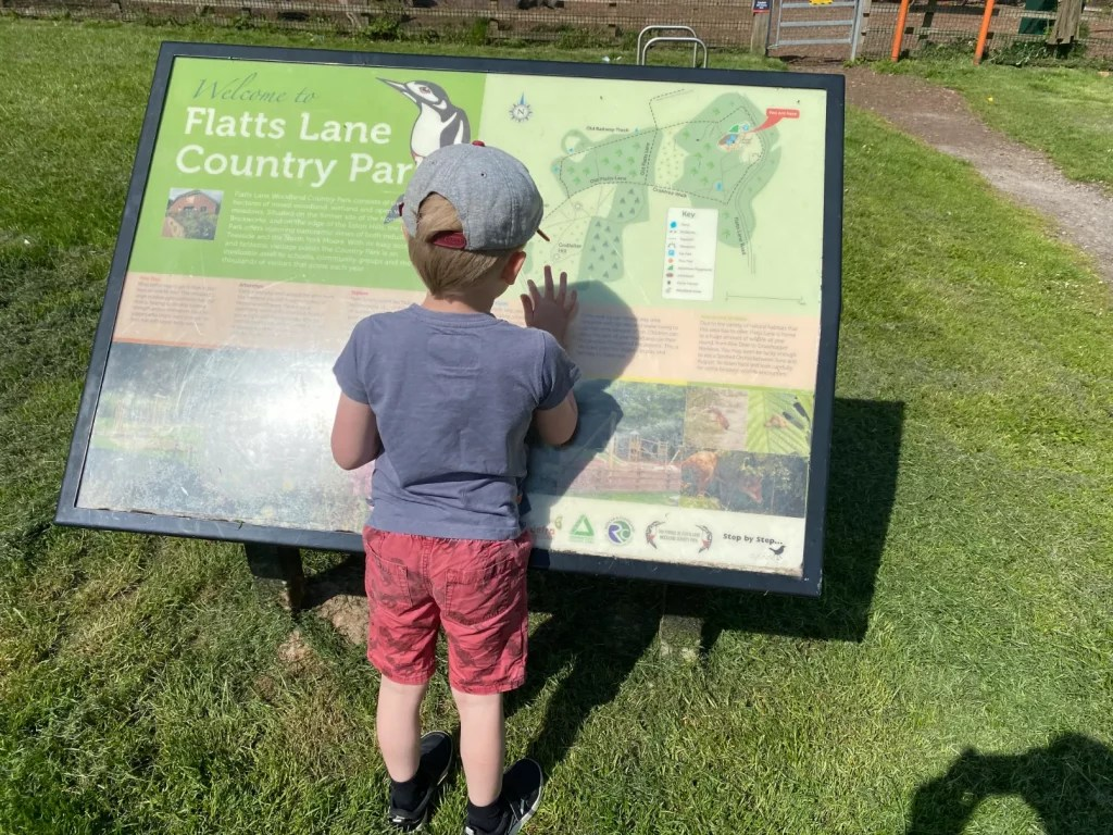 Alfie At Flatts Lane Country Park