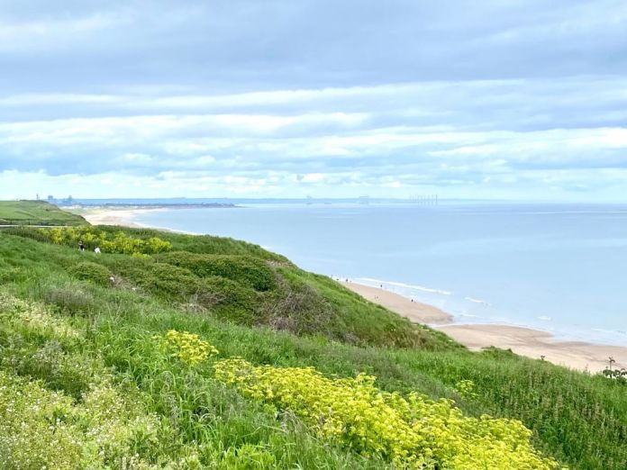 View Of Redcar From Saltburn
