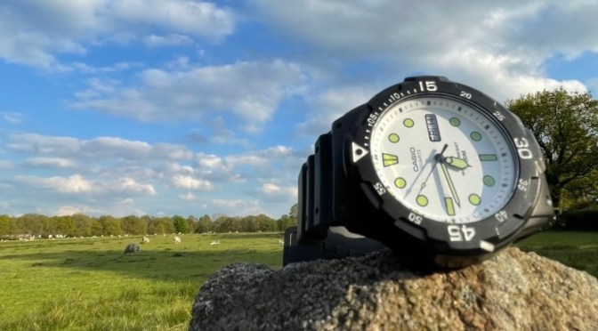Watch Reviews: A Dive Style Watch For a Tenner?