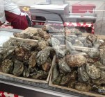 oysters at the beer festival