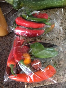 Bags of Chillies