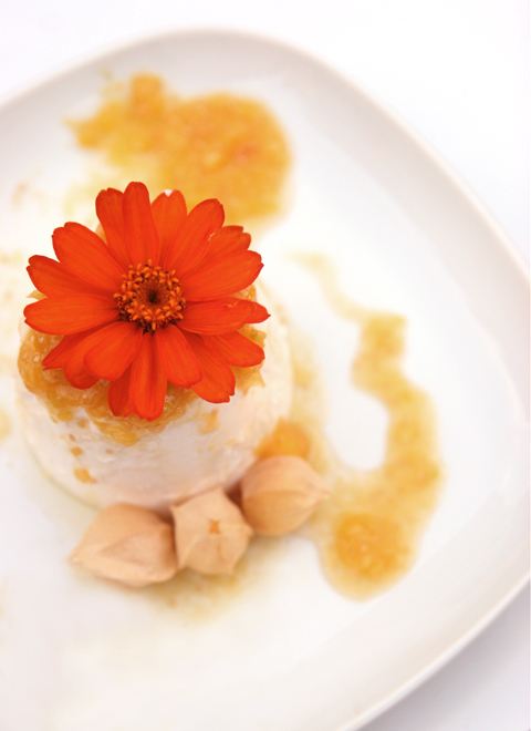 Panna Cotta w Ground Cherry04