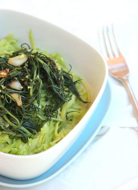 agretti plated 2