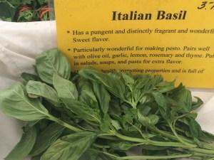 Italian Basil
