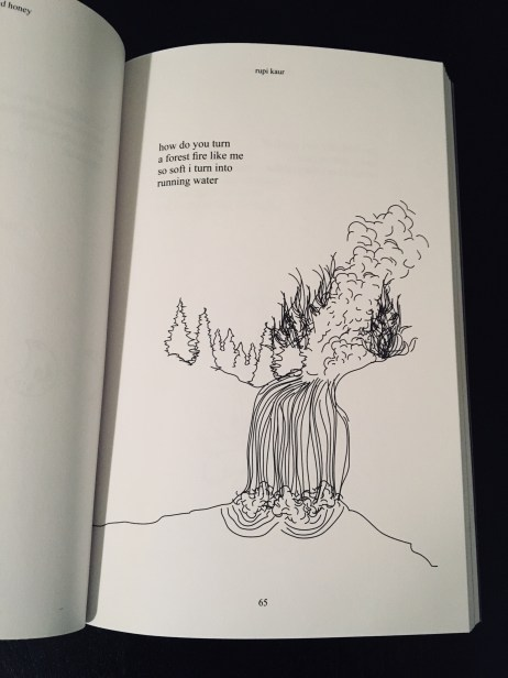 Milk And Honey Rupi Kaur Forest Fire into Water
