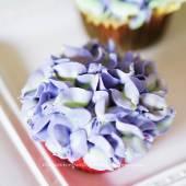 hydrangea cupcake blue