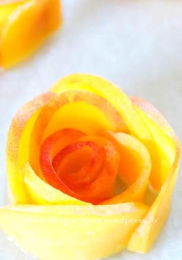 peach rosette close up