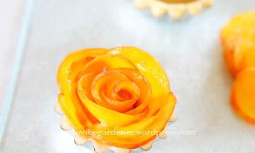 peach rosette5
