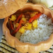 pumpkin & chicken on rice