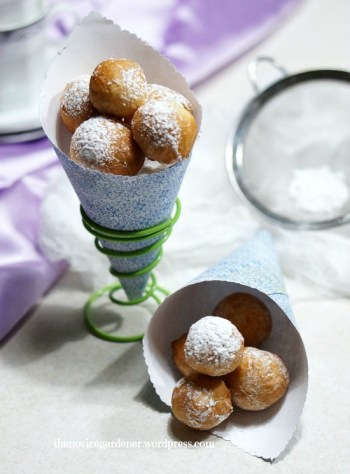 beignet balls thenovicegardener