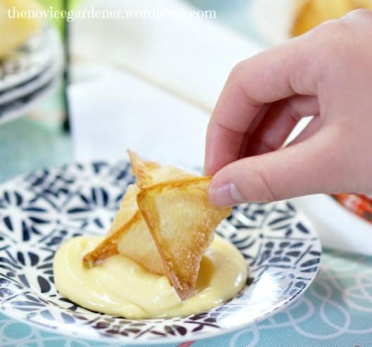 fried wonton appetizer | fiestafriday.net